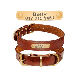 Personalized Genuine Leather Dog Collar