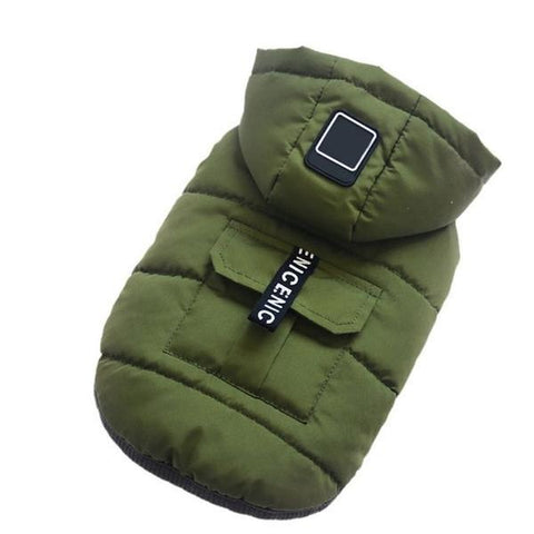 green winter hoodie dog coat