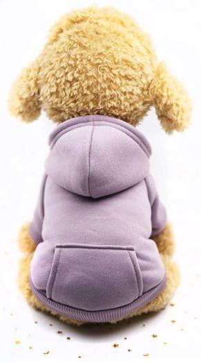 purple hoodie dog sweater