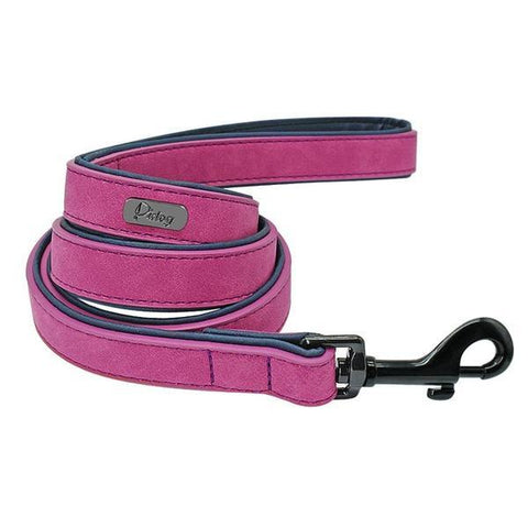 Purple padded leather dog leash