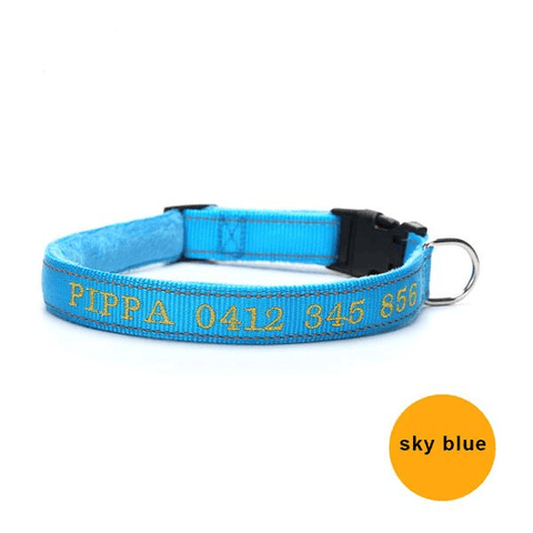 Image of light blue custom embroidered reflective dog collar