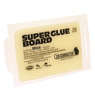 Catchmaster Super Mouse Size Glue Boards (72MB)