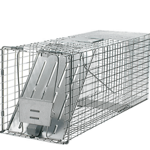 Havahart Large 1 Door Animal Trap Product Image