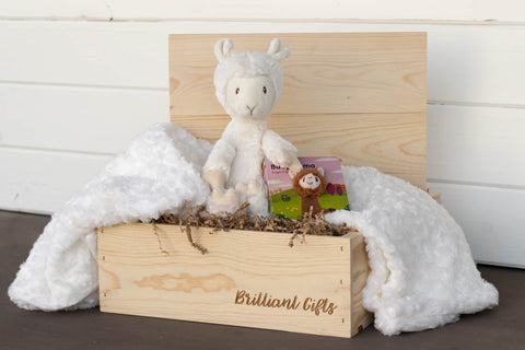 Llama Baby Shower Gift Set | BrilliantGifts.com