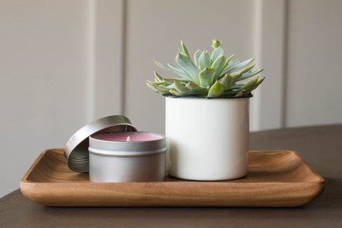 https://brilliantgifts.com/products/succulent-gift