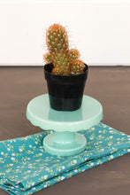 Load image into Gallery viewer, Cacti Gift Box