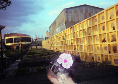 Steven Paner - Flower Girl - Print - Project Hidden Places