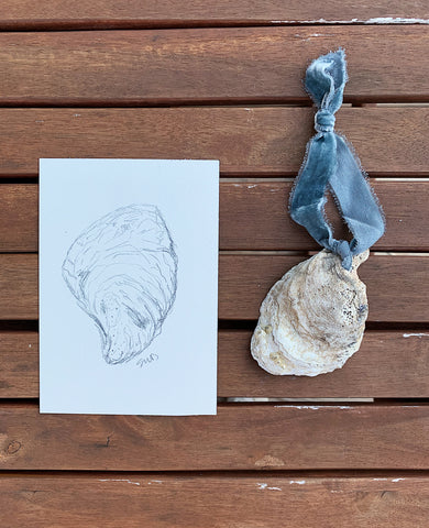 Oyster Ornament + Sketch