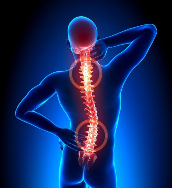Muscle spasms lead to back pain
