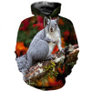 3D All Over Printed Squirrel T Shirt Hoodie 1512017