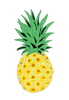 Pineapple Cupping Bearcat PNG Coffee
