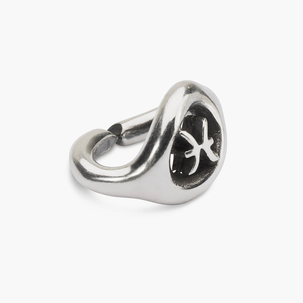 Pisces, single silver link