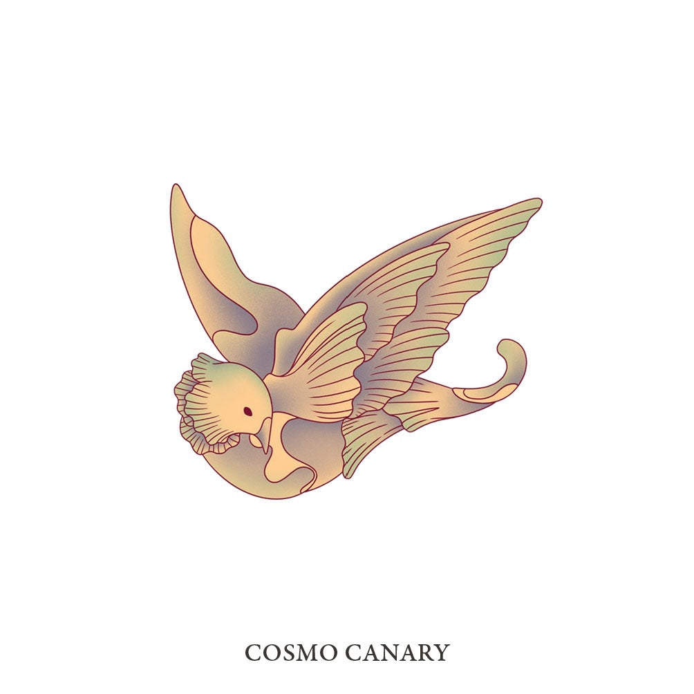 COSMO CANARY