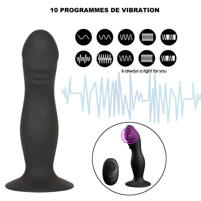Dildo Ventouse Anthony Deluxe