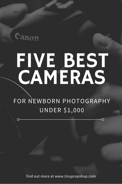 5 Best Cameras for Newborn Photography under $1000