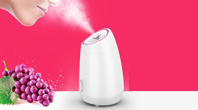 The Best 5 Professional at Home Facial Steamer 2020