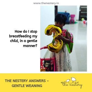 The Nestery Answers – Gentle Weaning Techniques