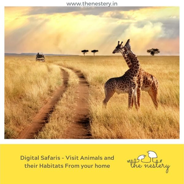 Digital Vacations Part 2 - Digital Safaris - Visit Animals and their Habitats from your home