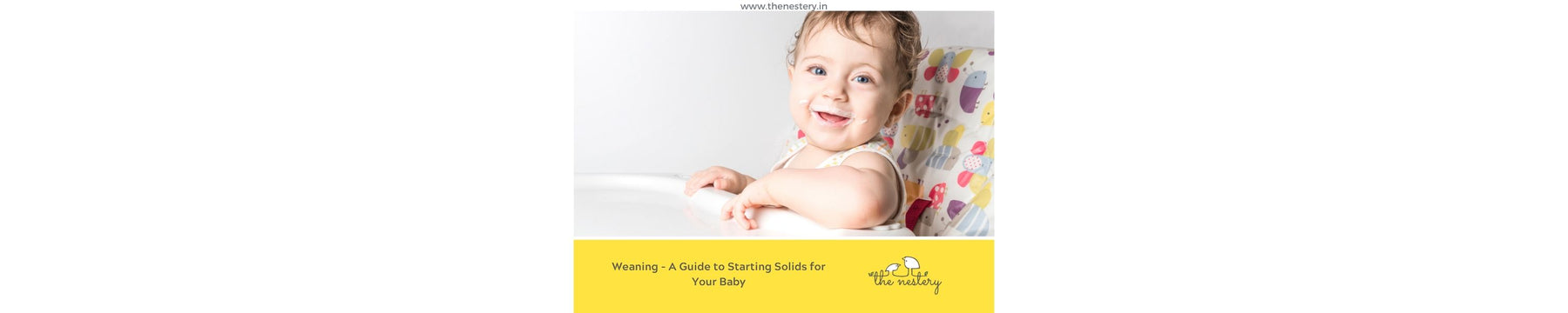 Weaning - A Guide to Starting Solids for Your Baby
