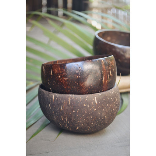 The Nestery : Almitra Sustainables - Coconut Bowl (Pack Of 2)