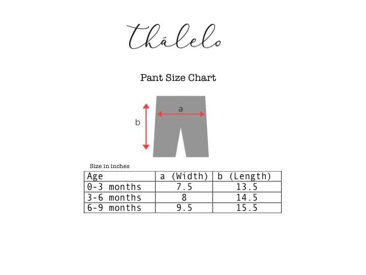 T - Shirt + Pant Set - Blue And Brick Red