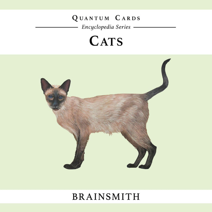 The Nestery: Brainsmith - Quantum Cards - Cats