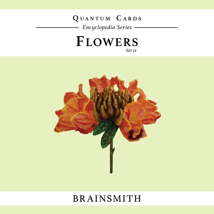 The Nestery: Brainsmith - Quantum Cards - Flowers Set Ii