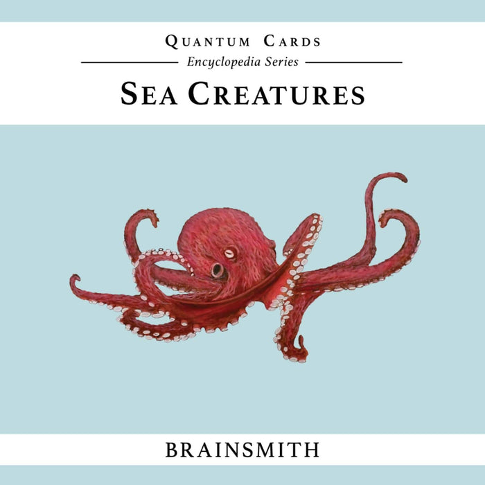 The Nestery: Brainsmith - Quantum Cards - Sea Creatures
