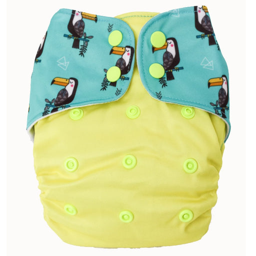 The Nestery : Bouncing Peaches - Reusable Cloth Diaper - Razzle Dazzle