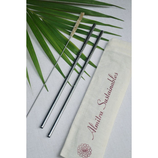 The Nestery :Almitra Sustainables - Stainless Steel Straw (Straight) Pack Of 2 With 1 Cleaner