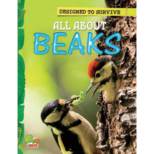 The Nestery : Teri Press - Designed To Survive: All About Beaks