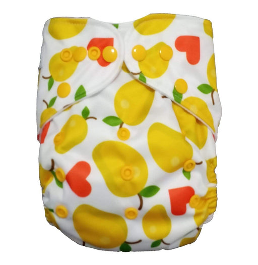 The Nestery: Tushions - Gd Pocket Diaper - Aamruta