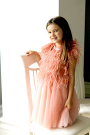 Handmade, short baby girl party dress for special occasion, apricot mit tulle skirt and feather embellishments, for special occasions, birthdays, weddings