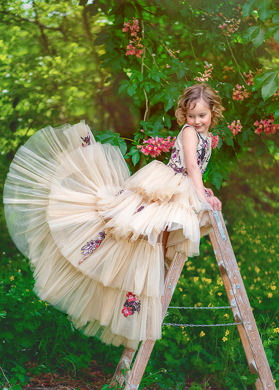 Fairy Tale Princess Photo Shoot