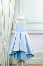 Handmade short baby blue princess tulle dress for girls with a blue tulle petticoat, embroidered top with flowers, pearls and feathers