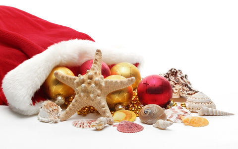 Santa's hat with gold baubles & seashells falling out of it onto the sand
