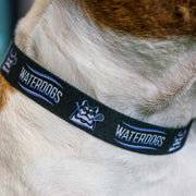 PLL Waterdogs Dog Collar