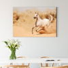 Pentium horse animal decorative painting 004