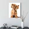 Happy dog animal class decorative painting 050