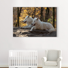 Cute white wolf animal decorative painting 040