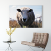 Cute sheep animal decoration painting 035