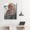 Cute monkey animal decorative painting 077