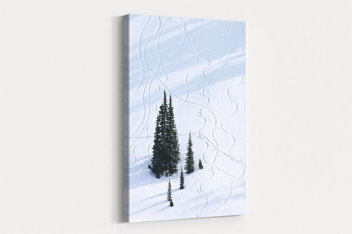 Curve in the snow black and white decorative painting 032