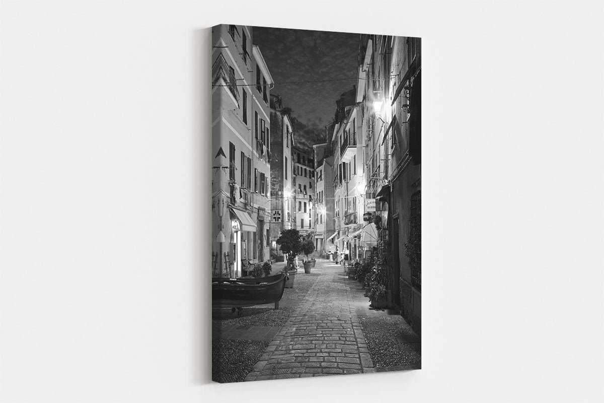 Night alley black and white decorative painting 036