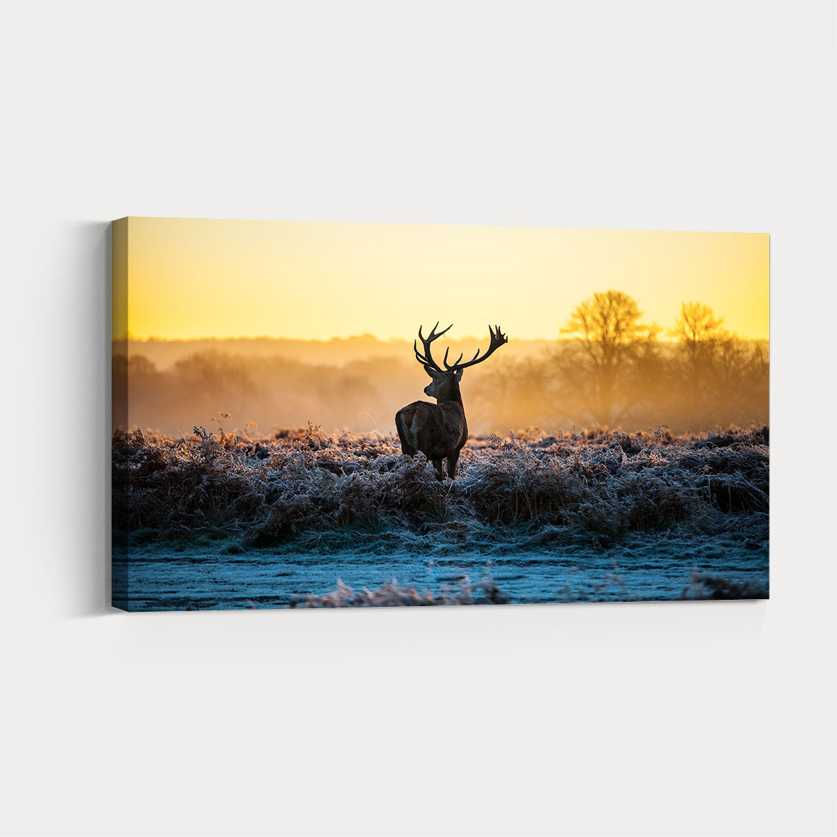 Lively deer Framed Wall Art 010