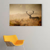 Lively deer Framed Wall Art 002