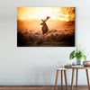 Lively deer Framed Wall Art 015