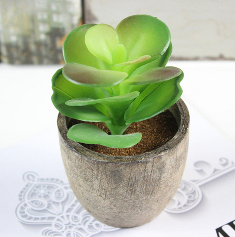 Artificial Succulent