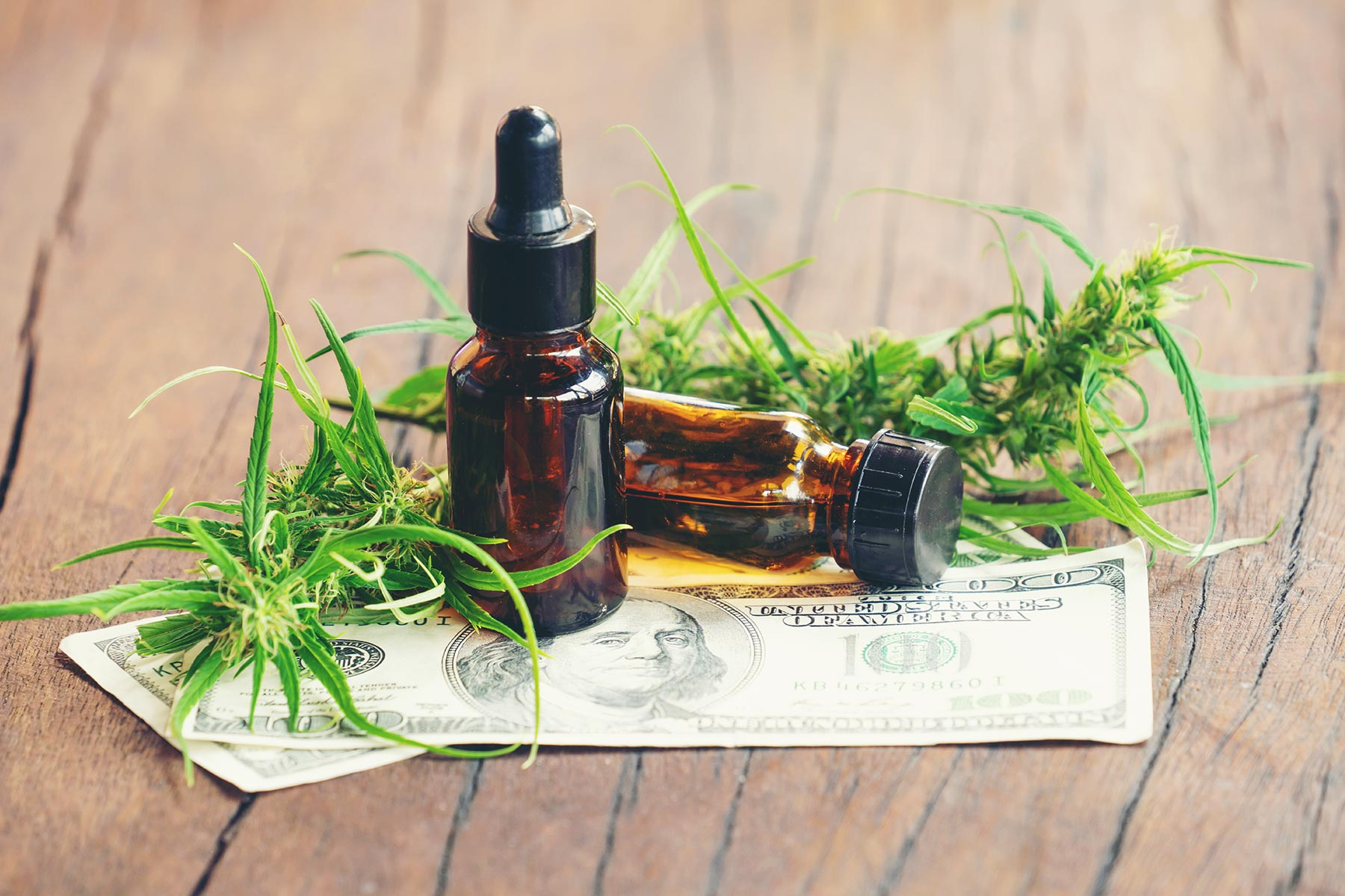 Why Is CBD so Expensive? Key Differences Between Hemp Oil vs CBD Oil