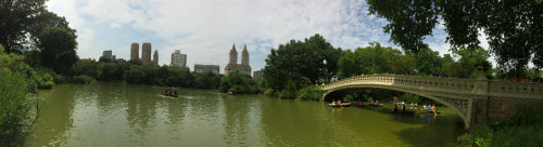 Where to Fish in New York City Parks?